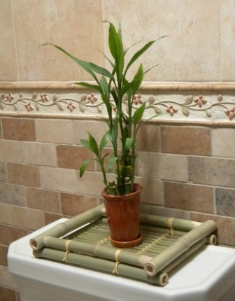 Plant on Small Bamboo Tray