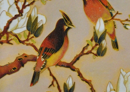 Close-up of Cardinals & Magnolias
